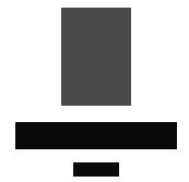 Negin Logo